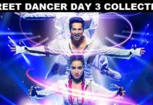 Street Dancer 3D Day 3 Collection – 3rd Day Box Office Collections Of Varun Dhawan – Shraddha Kapoor Starrer Street Dancer 3D