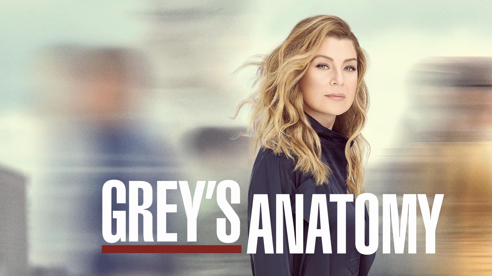 Grey's Anatomy Season 17 Netflix Release Date