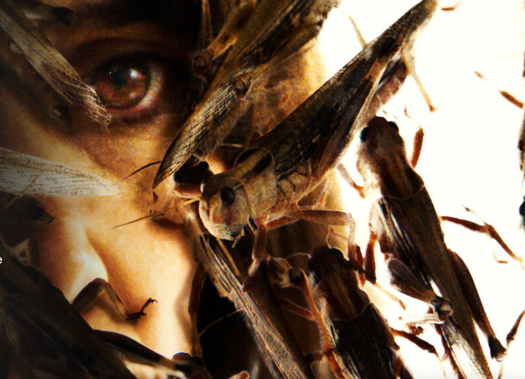 the swarm french horror film release date