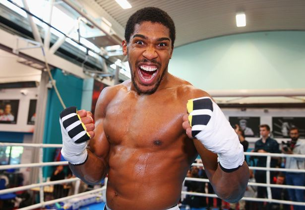 Anthony Joshua poses as he takes part in a training session during the Anthony Joshua Media Day at English Institute of Sport on September 12, 2018 in Sheffield, England.