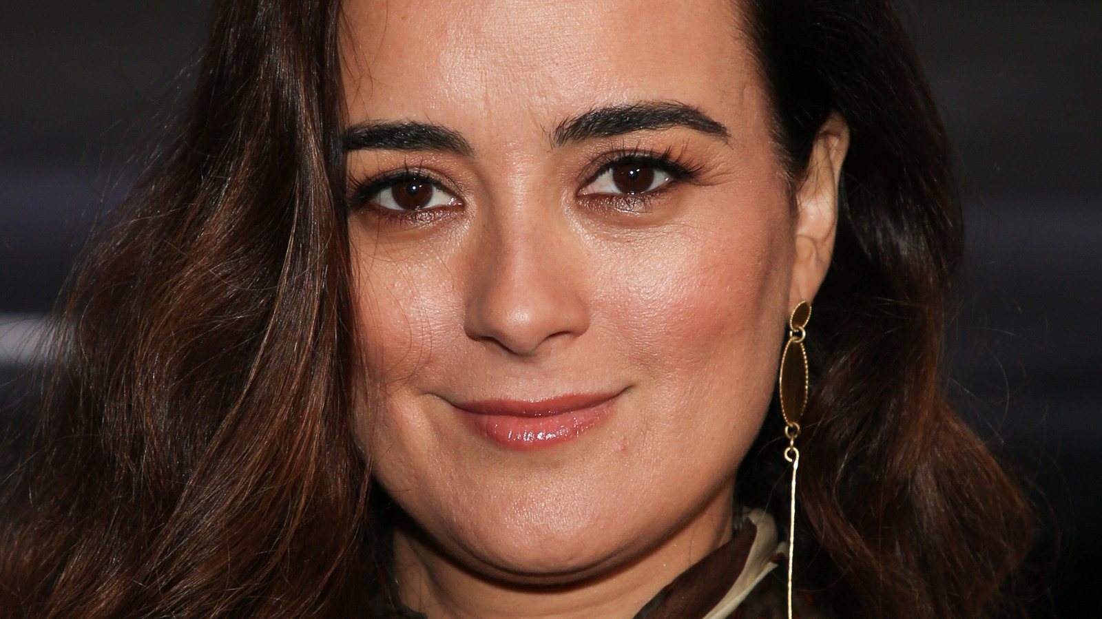 Here's What Cote De Pablo From NCIS Is Doing Now