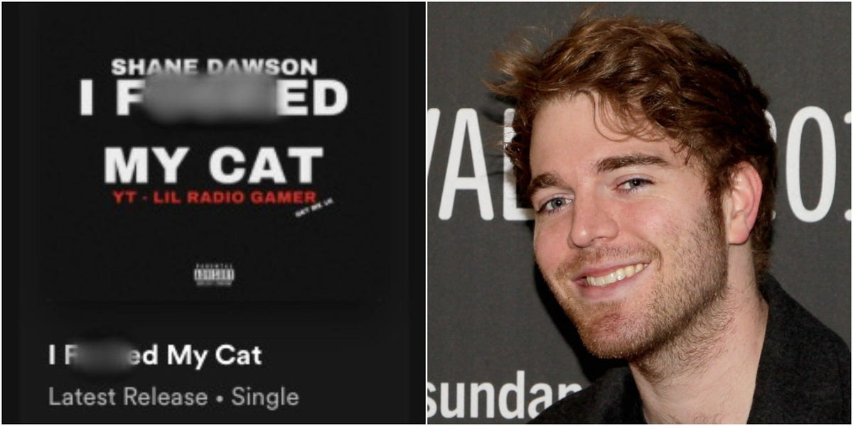 Shane Dawson's Spotify Releases New Song, Fans Assume a Hack