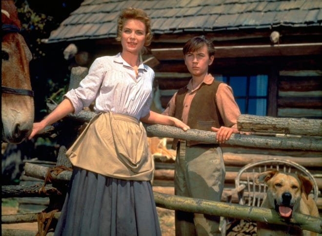 """This image released by Disney shows Dorothy McGuire, left, and Tommy Kirk in a scene from the 1957 classic """"Old Yeller."""""""