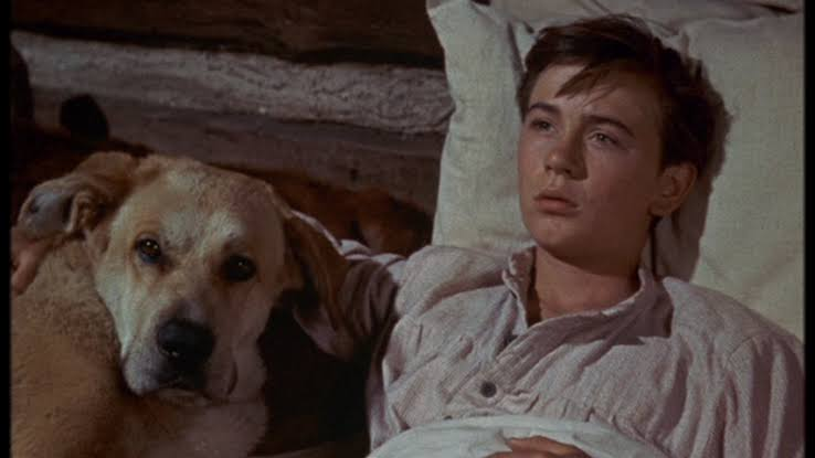 Was Tommy Kirk gay? Ex-Disney child actor took his last breath at 79